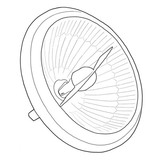 Lámpara incandescente halógena formato AR111