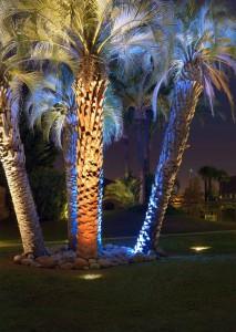 Uplight, iluminación de follaje