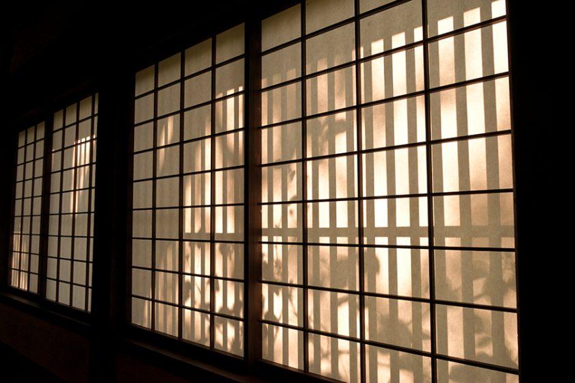 El Elogio de la Sombra - Luz pobre